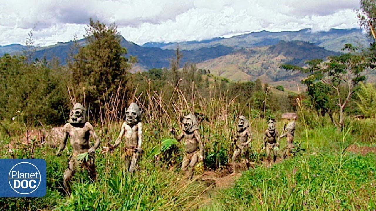 Full Documentary | Ambassadors of the jungle - Planet Doc ...