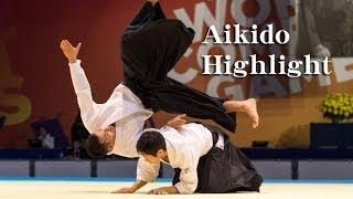 Aikido Highlight - Shirakawa Ryuji sensei