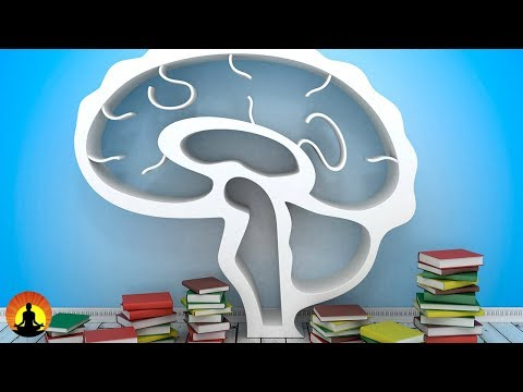 2 Hour Study Music Brain Power: Focus Concentrate Study ☯130