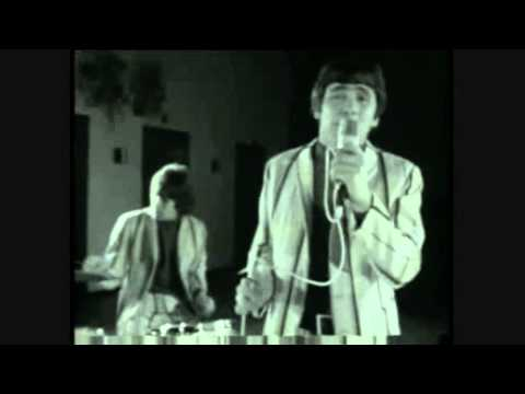 The Troggs - Can I Dance With You