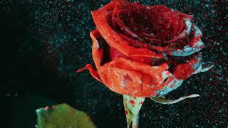 Martin Garrix & David Guetta - So Far Away (feat. Jamie Scott & Romy Dya) (Codes Remix)