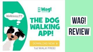 Wag Dog Walking  Review ► Dog Walking App Wag! ◄ On Demand Dog Walking Sitting Boarding