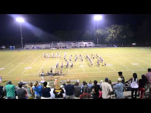 Eustis High School Panther Band Half Time Show - 8/30/13 - Nikon D3100