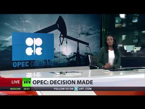 OPEC won't cut oil output, crude prices plummet to 4yr low