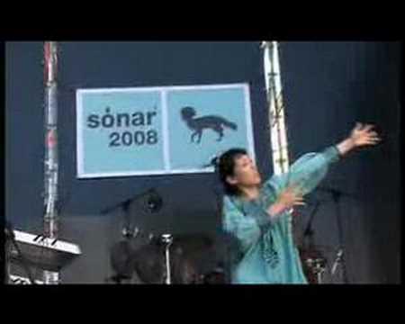 Little Dragon Sonar 2008