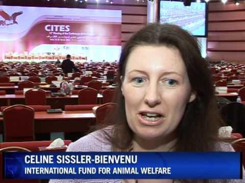 Economy trumps ecology at UN wildlife meet
