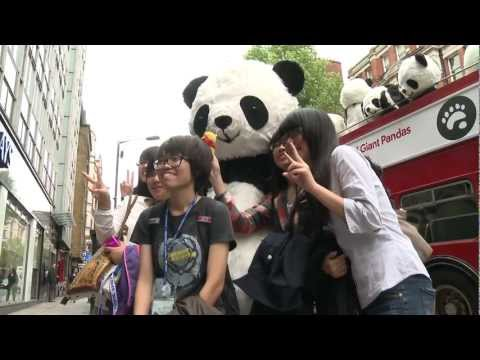 Panda-Monium Takes Over London