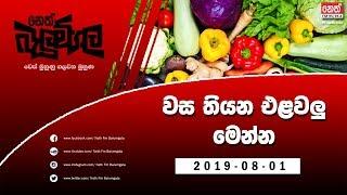 Neth Fm Balumgala | 2019-08-01