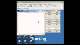 Motion Tracking - ImageJ