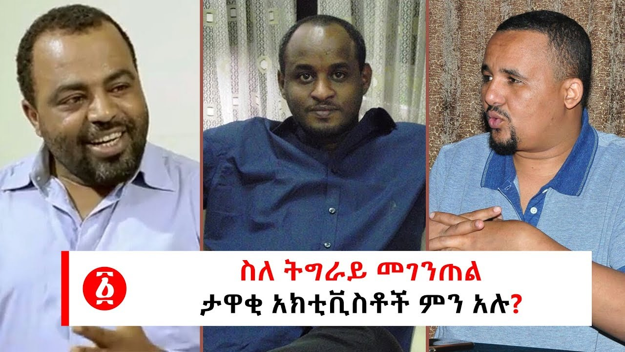 What did prominent activists say about Tigray's independent?