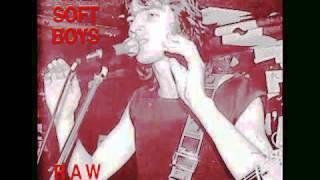 Watch Soft Boys Black Snake Diamond Rock video