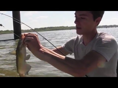 How to Catch Catfish in a Lake - Rigs. Tips. Techniques - Bank Catfishing