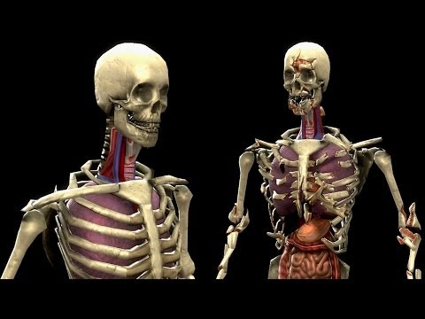 Mortal Kombat Komplete Skeleton Mod & Test Your Luck Madness video