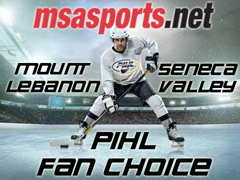 MSA Sports / PIHL