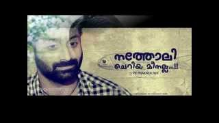 Natholi Oru Cheriya Meenalla - Natholi Cheriya Meenalla Malayalam Movie Trailer