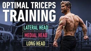 How To Build Huge Triceps with Optimal Training Technique