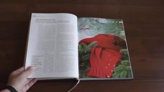 Библиотека стилиста. Книга Мода Цвет Стиль / Имидж-тренер Татьяна Маменко