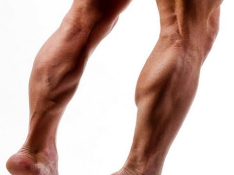 CALF RAISE Workout: Best Way to Exercise (Super 7 System - LEGS 6) Image 1