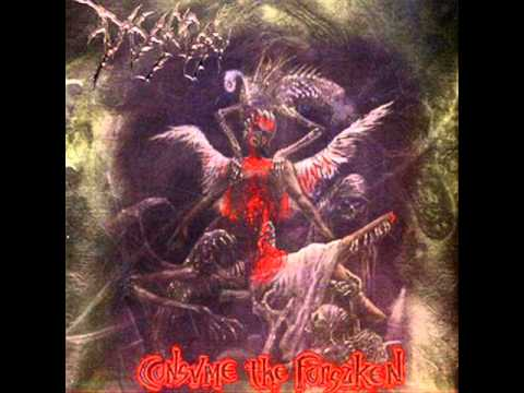 Disgorge - Demise Of The Trinity