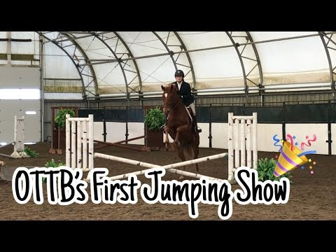 OTTB's first show over fences