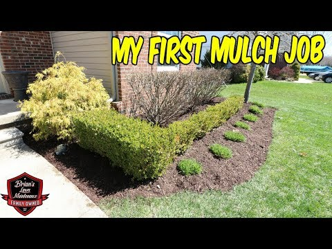 Doing Our First Mulch Job | 6 Yard Residential Mulch Install