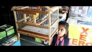 Little Angel - A cute little short film