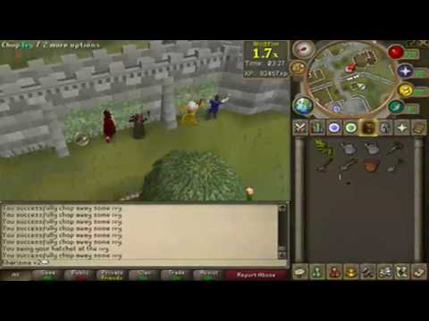 Runescape Commentary – Constitution Update