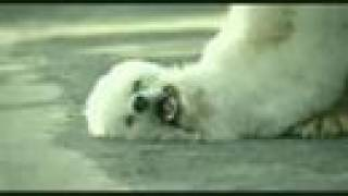 COMERCIALES CHISTOSOS - FUNNY COMMERCIALS
