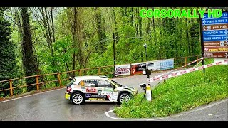 33° Rally Piancavallo 2019 - IRC Show and Mistake