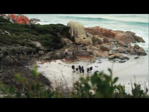 Bay of Fires Walk, Tasmania - Tourism Tasmania