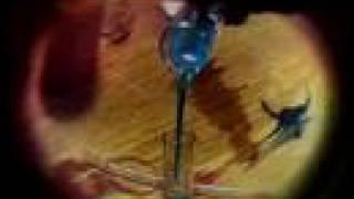 Vídeo 6 de Nação Zumbi