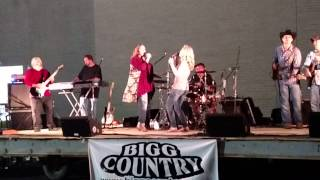 Roll the Dice - Bigg Country