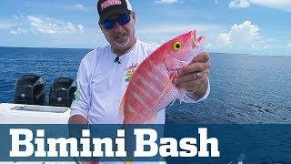 Nighttime Swordfish Seminar - Florida Sport Fishing TV