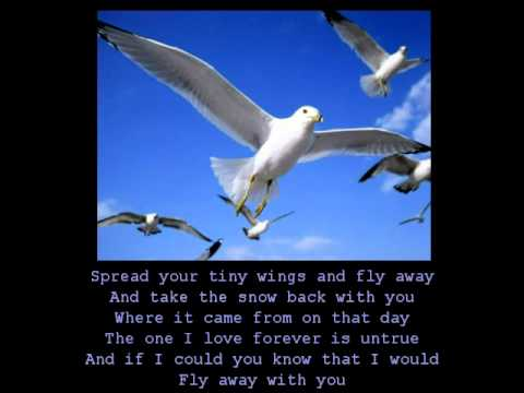 Anne Murray - Snowbird