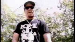 Watch IceT Straight Up Nigga video