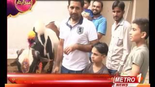 Pakistani Cricketer Sarfraz Ahmed Celebrating Eid With Family