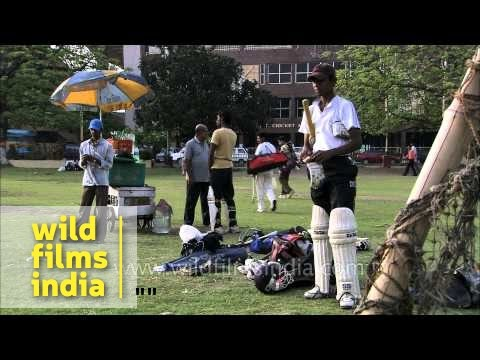 Young aspiring cricketers practicing the game of cricket in the nets. This location is situated near the famous cricket stadium Eden Garden in Kolkata, West ...