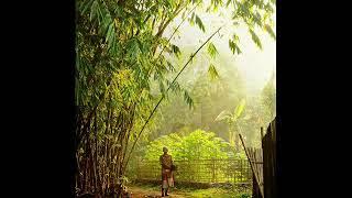 Download Lagu Degung Sunda - Dareuda Gratis STAFABAND