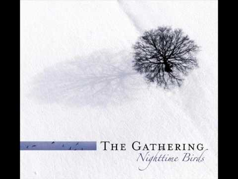 Gathering - Kevin