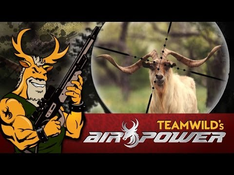 EXTREME Airgun - Hunting Catalina Goats