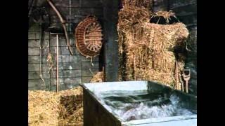 Wet Dreams By Sargon