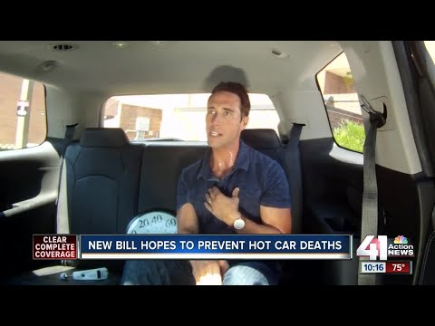 115 degrees in 10 mins: Kids and hot cars