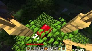 Minecraft, multi con los colegas parte 14, tour por las casas y arbol casa con carcel, español HD