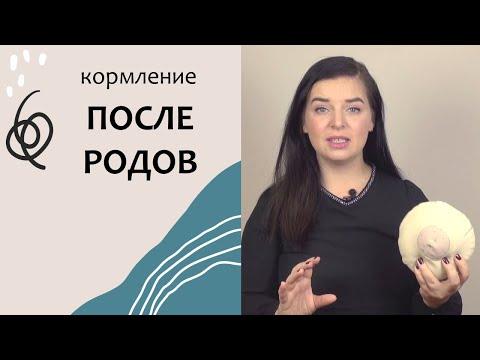 Выпуск 54. Что ждёт после родов. Грудное вскармливание