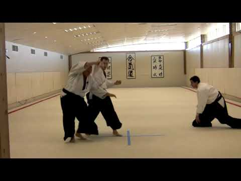 Aikido Randori- Demonstration Multiple Attack 1 Image 1