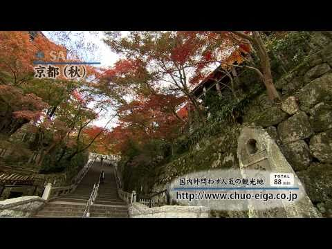 【World Heritage】Kyoto, JAPAN (Fall & Autumn Colors) | 世界遺産:京都 (秋,紅葉)