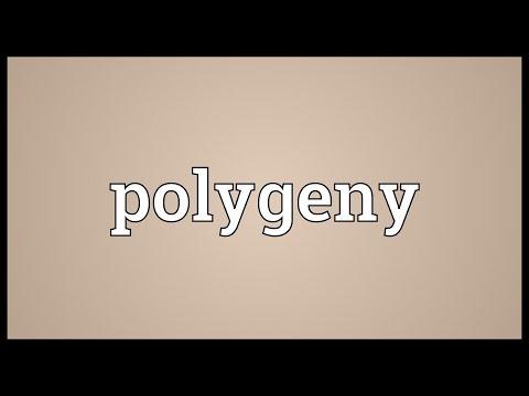 Header of polygeny