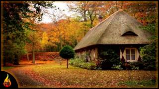 Instrumental Folk Music | Shades of Orange | Emotional Guitar Music