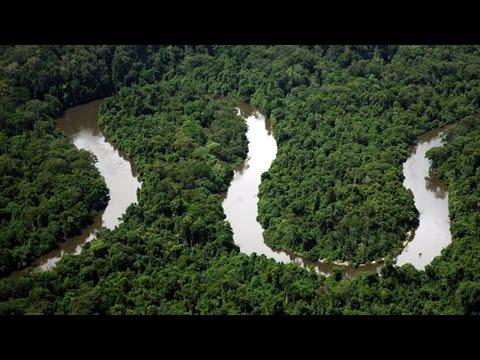 Clique e veja o vídeo Ecoturismo -  Unidades de Conservação