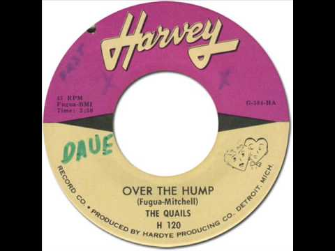 The Quails Over The Hump I Thought